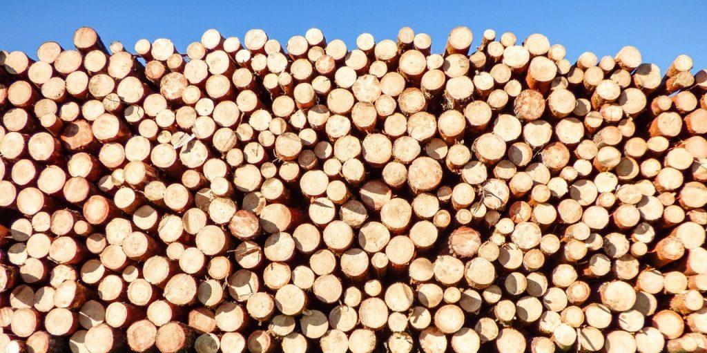 new logging tech